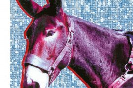 "Protomartyr – ""Ultimate Success Today"", fot. Domino Recording Company"